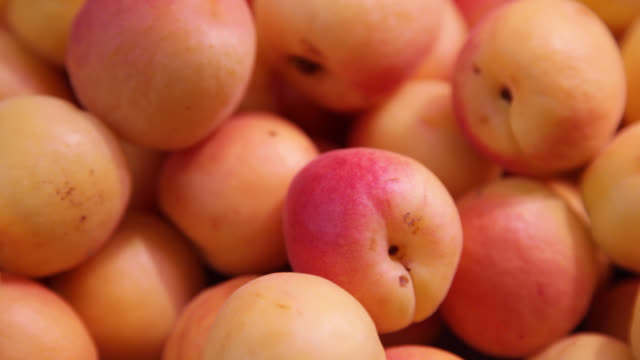 apricots on display at the counter of a fruit shop in a market - antioxidant stock videos & royalty-free footage