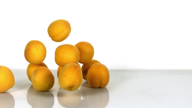 Apricots, prunus armeniaca, Fruits falling against White Background, Slow Motion