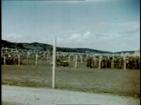 april 26, 1945 german pows standing in holding areas / torgau, saxony, germany - saxony stock videos & royalty-free footage