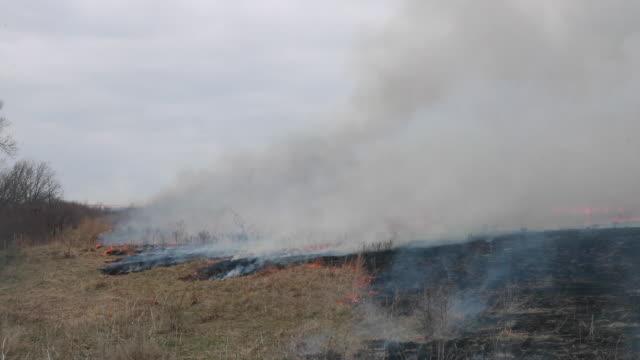 april 5, 2020 - manhattan, kansas: the annual burning of prairie grass in the flint hills of kansas takes place during the 2020 covid-19/coronavirus... - prairie stock videos & royalty-free footage