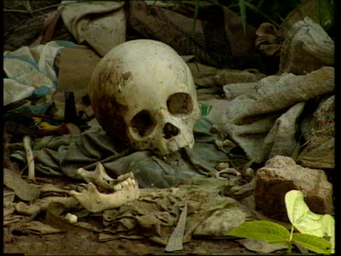 April In 1994 the Rwandan president's plane was shot down EXT Armed soldier of the Tutsi rebel army towards along dirt track / Mothers with children...