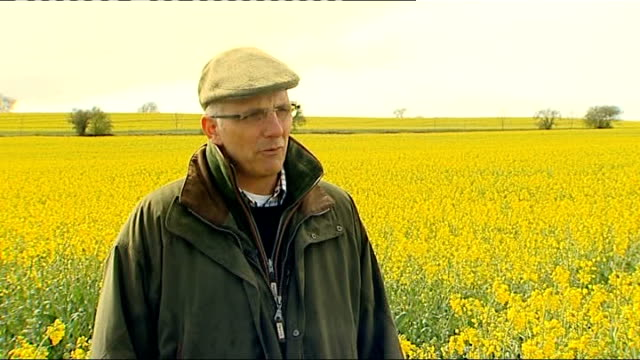 april set to become wettest on record; gloucestershire: guiting power: cloudy sky tilt down corn field farmer looking at roots of crops with itn... - aprile video stock e b–roll