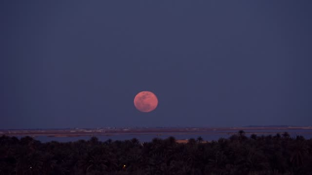 april's fullmoon rising over the salt lake of siwa oasis - vollmond stock-videos und b-roll-filmmaterial