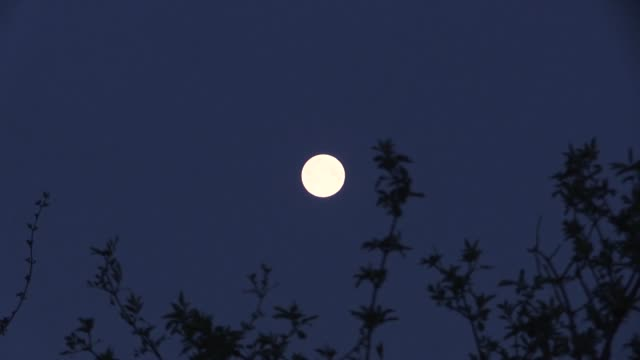 april's 'pink moon' over tingley, leeds. across the country, people have being grabbing cameras and smartphones to try and record the lunar light... - april stock videos & royalty-free footage