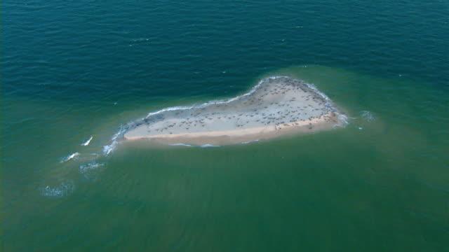 Aquamarine waters surround a small sandbar off the Mississippi coast.