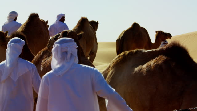 Arab Bedouin males in traditional dress leading camels