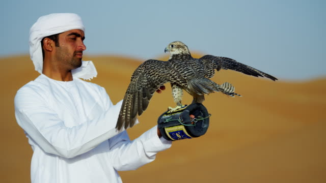Arab falconer in desert with bird of prey