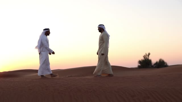 arab men greetings in the desert - face to face stock videos and b-roll footage