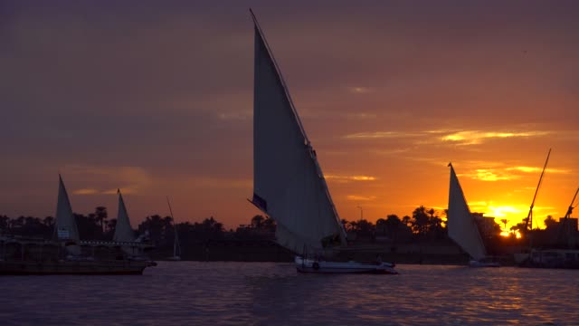 arabic feluccas on the river nile at luxor - egypt stock videos & royalty-free footage