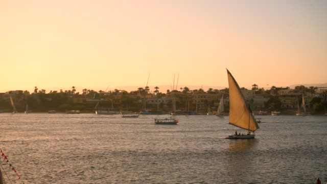 arabic feluccas on the river nile at luxor - luxor thebes stock videos & royalty-free footage