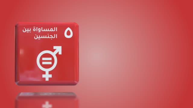 arabic number 5 gender equality 3d box sustainability goals 2030 with copy space - gender equality stock videos & royalty-free footage