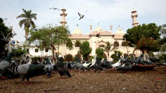 arambagh masjid, karachi, pakistan. - karachi stock videos & royalty-free footage