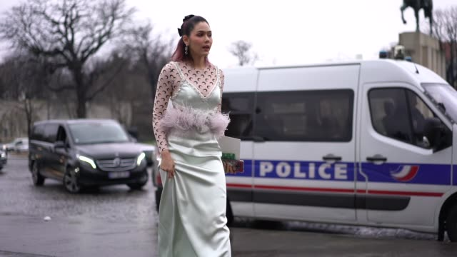 araya hargate is seen outside elie saab during paris fashion week haute couture spring summer 2020 on january 23 2019 in paris france - fashion collection stock videos & royalty-free footage