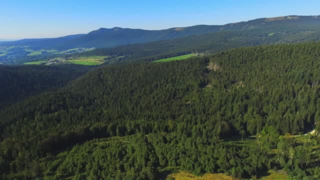 vídeos de stock, filmes e b-roll de região de arber no viaduto da floresta bávara - floresta da bavária