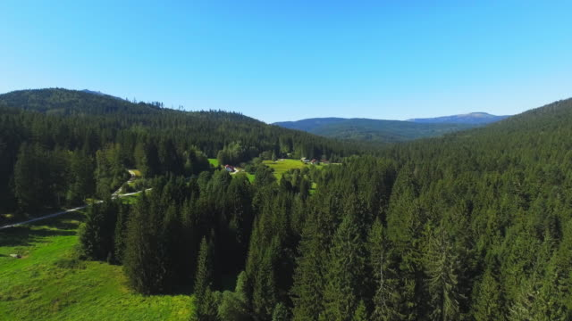 arber region in the bavarian forest from the southeast - spruce stock videos & royalty-free footage