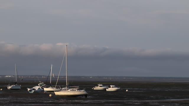 arcachon basin at low tide - knochen im beckenbereich stock-videos und b-roll-filmmaterial