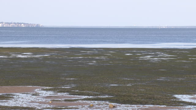 stockvideo's en b-roll-footage met t/l arcachon basin low tide at high tide - getijde