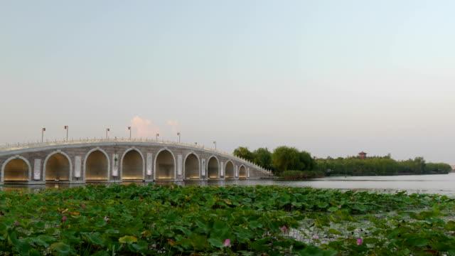 arch bridge in wetland park - arch bridge stock videos & royalty-free footage
