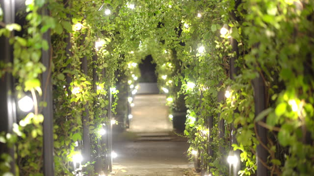arch covered with ivy and lighting at night - electric lamp stock videos & royalty-free footage