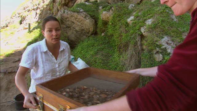ZI Archaeological researchers sifting dirt and ash through a sieve / South Africa
