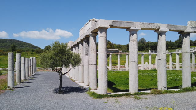 archaeological site of ancient messene , ruins of the palaestra (wrestling hall) , near kalamata , messina, messinia, peloponnes, greece - 3rd century bc stock videos & royalty-free footage