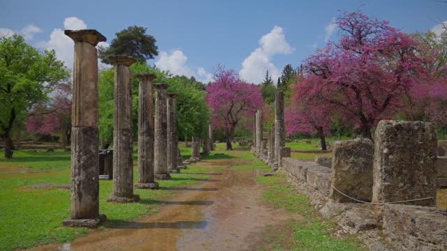 vídeos y material grabado en eventos de stock de sitio arqueológico de la antigua olimpia, ruinas de la palaestra en el árbol de olimpia y judas ( cercis siliquastrum ), peloponnes, grecia - judas