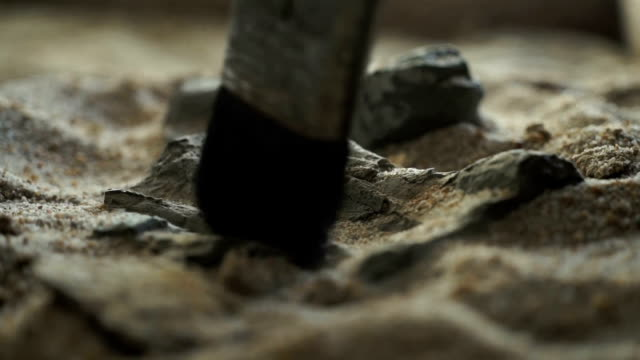 cu archaeologist brushes fossil rocks/ muldersdrift/ south africa - archaeology stock videos & royalty-free footage