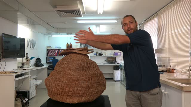archaeologist haim cohen displays a 10,500-year-old basket dating back to the pre-pottery neolithic period that was unearthed in murabaat cave in the... - eddie large stock videos & royalty-free footage