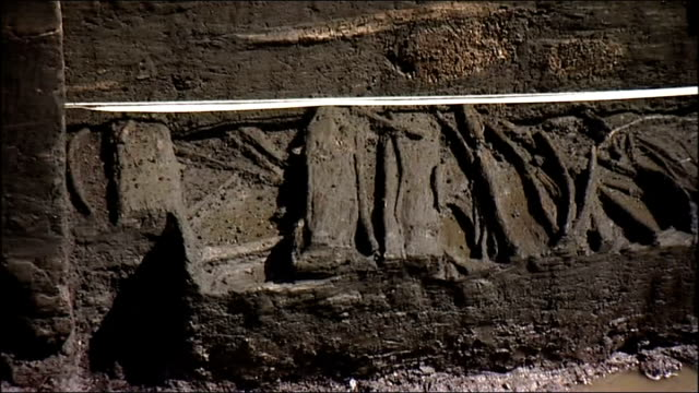 vídeos de stock e filmes b-roll de scarborough: gvs at site of britain's oldest house; england: yorkshire: star carr: ext gv archaeological dig at site of britain's oldest house to... - scarborough reino unido