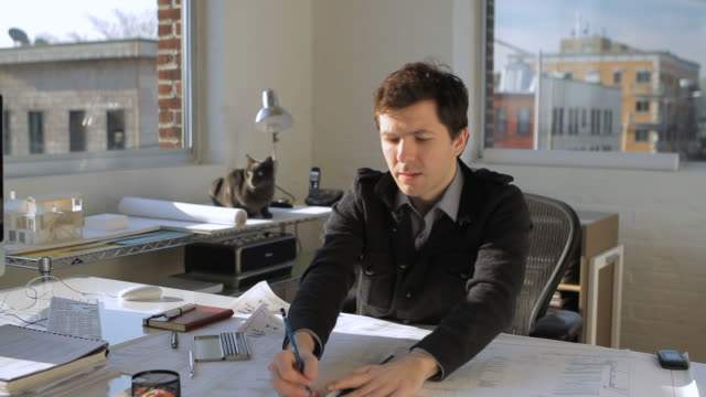 stockvideo's en b-roll-footage met ms td architect working at desk while cat in background / new york city, new york, usa - alleen één mid volwassen man