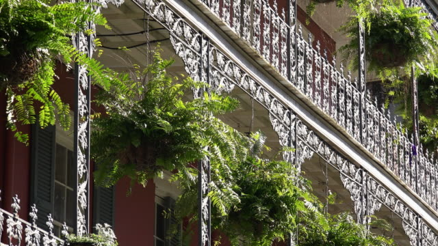 vídeos de stock, filmes e b-roll de architecture of new orleans french quarter featuring wrought iron balcony and ferns - 2016