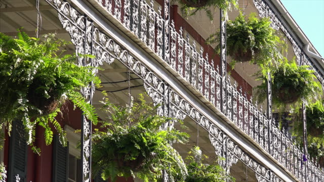 Architecture of New Orleans French Quarter featuring wrought iron balcony and ferns