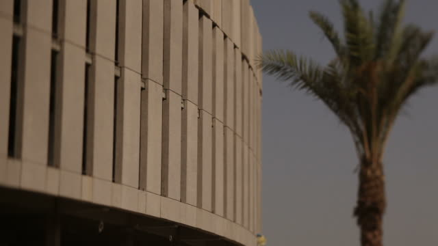 architecture, saudi arabia. shot of the exterior of a building with a palm tree on the right of frame. - jiddah video stock e b–roll