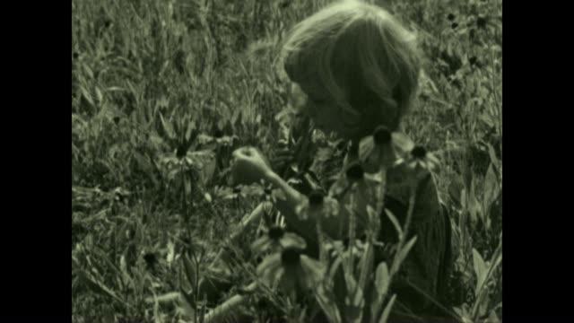 Archival film of Brown Eyed Susan flowers