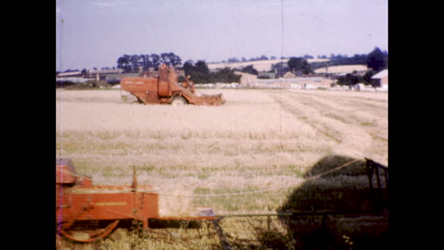 archive colour home movie footage of farmers working in the fields during the harvest in britain circa 1960s. - one man only stock videos & royalty-free footage
