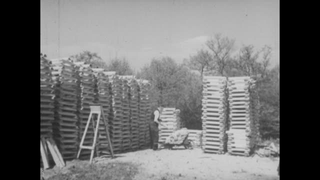 archive film footage circa 1939 of the manufacturing process of cricket bats. - 材木置き場点の映像素材/bロール