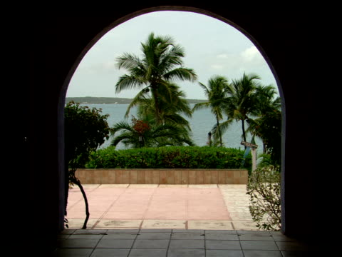 stockvideo's en b-roll-footage met ms,  archway overlooking palm trees and sea,  harbour island,  bahamas - waaierpalm
