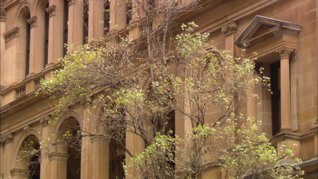 archways line the facade of a stone building in sydney, australia. - frontgiebel stock-videos und b-roll-filmmaterial