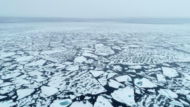 vidéos et rushes de arctic ocean drone footage, sea ice, pack ice patterns - iceberg bloc de glace
