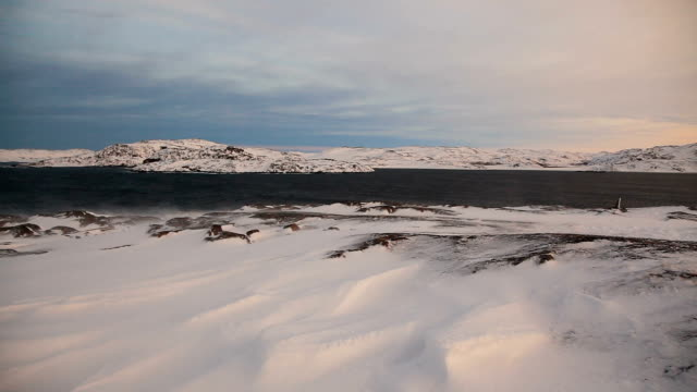 Arctic tundra at sunset during a strong wind