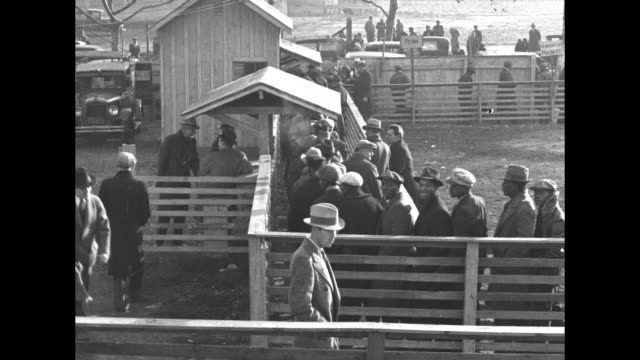 area filled with men wearing hats and coats can make out traffic in bg / fencedin line of men waiting to get paychecks under civilian conservation... - civilian conservation corps stock-videos und b-roll-filmmaterial