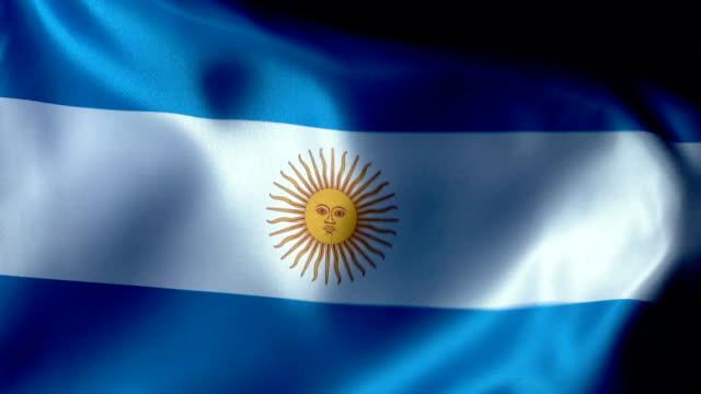 argentinien flagge flapping - argentinische flagge stock-videos und b-roll-filmmaterial