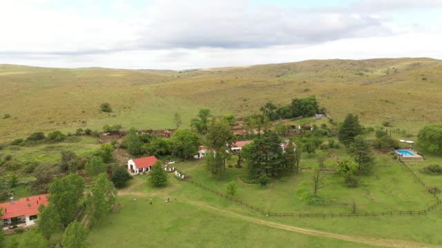 アルゼンチン牛牧場とその周辺のパンパス草原 - アルゼンチン点の映像素材/bロール