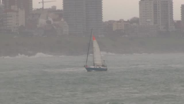 argentine sailor juan manuel ballestero who crossed the atlantic from portugal to the mar del plata to be reunited with his elderly parents amid the... - cetacea stock videos & royalty-free footage