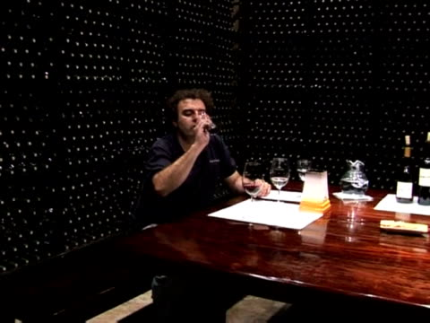 argentine wine exports have been increasing steadily, despite a sagging economy, apparently due to the increasingly high quality of their products... - 50 seconds or greater stock videos & royalty-free footage