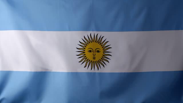 cu argentinean flag waving / berlin, germany - argentinische flagge stock-videos und b-roll-filmmaterial