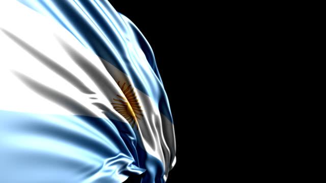 argentinische flagge hd-qualität, pal, ntsc, loop, alpha enthalten - argentinische flagge stock-videos und b-roll-filmmaterial