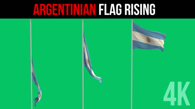 argentinian flag - argentina stock videos & royalty-free footage