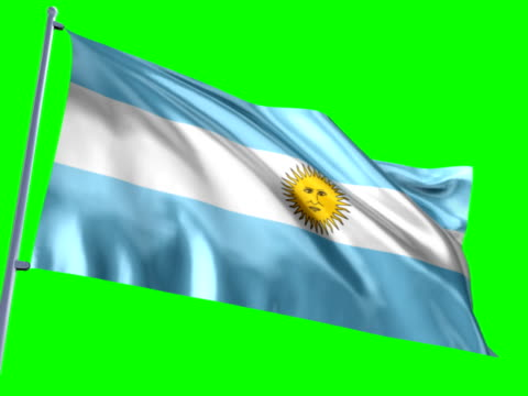 bandiera dell'argentina - bandiera dell'argentina video stock e b–roll