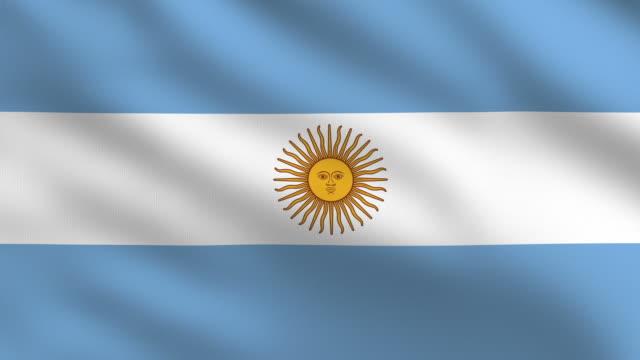 argentinische flagge - argentinische flagge stock-videos und b-roll-filmmaterial